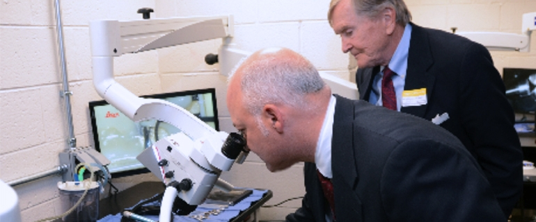 Two men looking through microscope