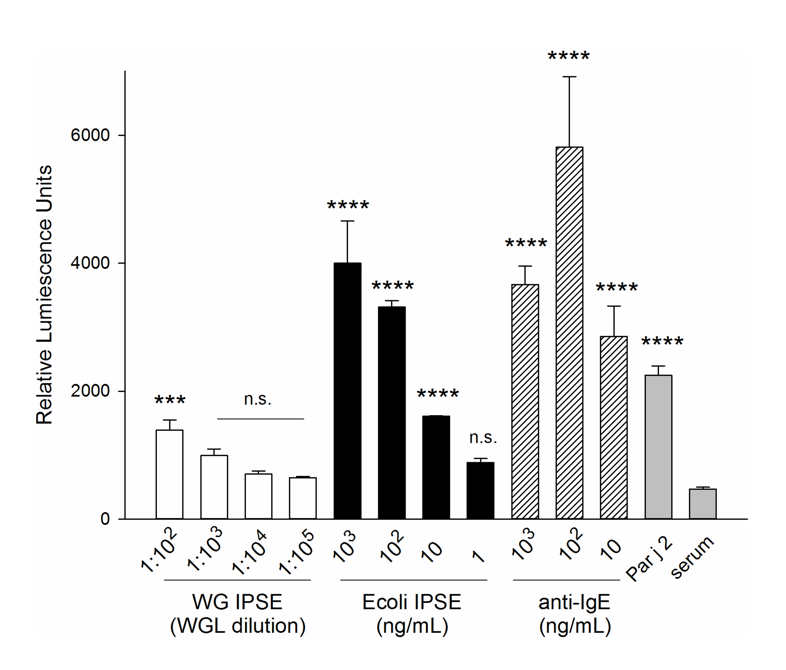 From Wan et al. Activation of RS-ATL8 reporter system by IgE binding factor IPSE/alpha-1 expressed in wheat germ (white bars) and E. coli (black bars).