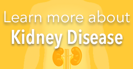 Learn more about kidney disease button