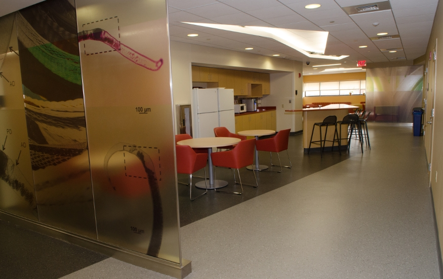 The MITM lunch and kitchen area