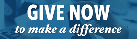 Give now to make a difference button