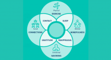 Graphic of 8 Resilience Practices