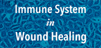 Immune System in Wound Healing