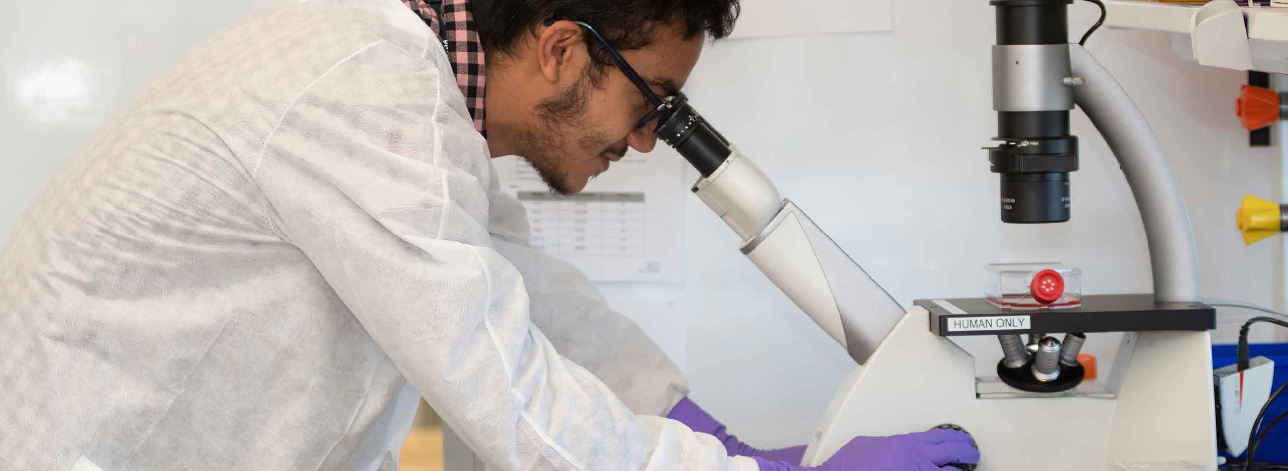 Summer Intern at GW School of Medicine and Health Sciences using a microscope