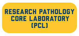 The Research Pathology Core Laboratory