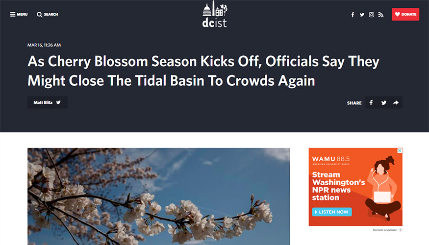 DCist - As Cherry Blossom Season Kicks Off, Officials Say They Might Close The Tidal Basin To Crowds Again