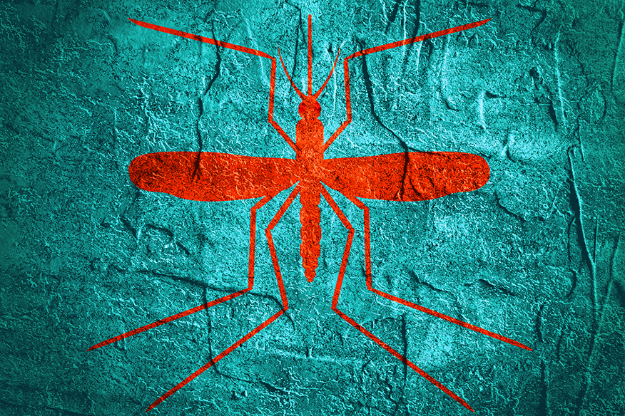 Artistic image of a mosquito