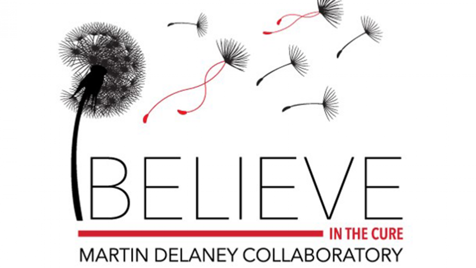 Believe in the Cure: Martin Delaney Collaboratory