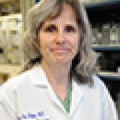 Mary Ann Stepp, Ph.D., professor of anatomy and regenerative biology and of ophthalmology