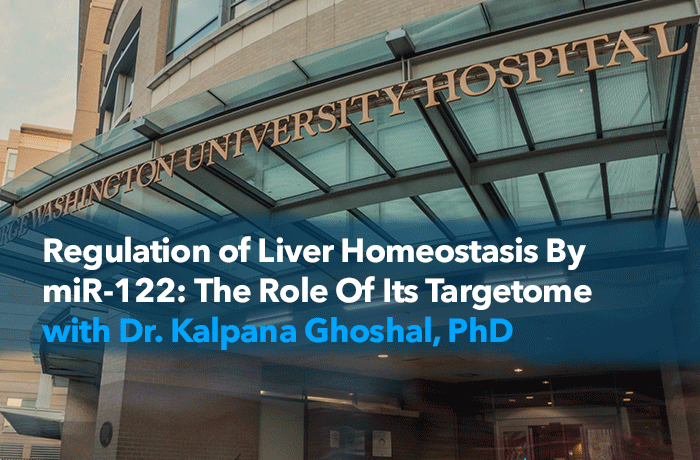Regulation of Liver Homeostasis By miR-122: The Role Of Its Targetome Event Banner