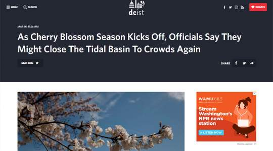 DCist - As Cherry Blossom Season Kicks Off, Officials Say They Might Close The Tidal Basin To Crowds