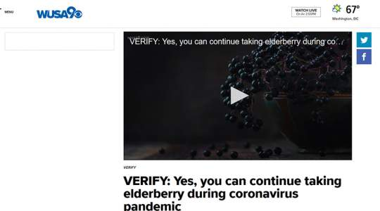 WUSA9 - Yes, You Can Continue Taking Elderberry During Coronavirus Pandemic