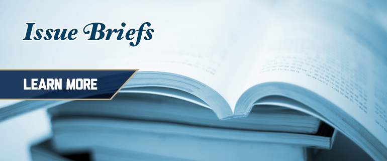 Issue Briefs: Learn more